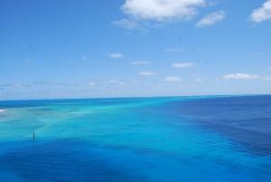 Grand Turk reef 3
