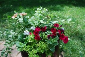 flowers 2015 bronze pot