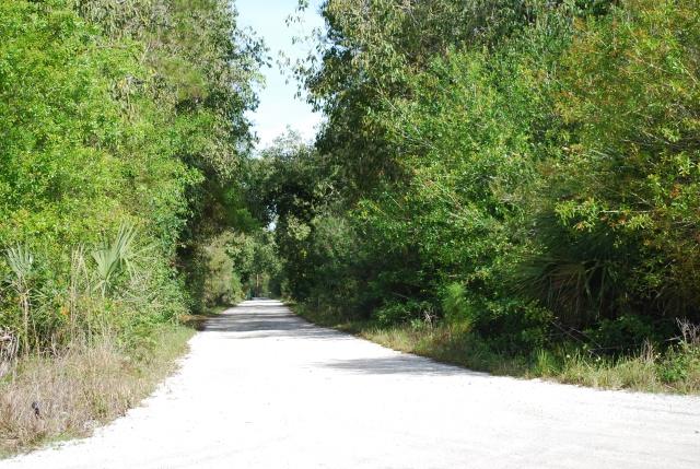 Dirt road 2