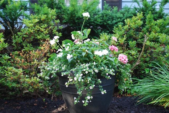 Front pot 2186