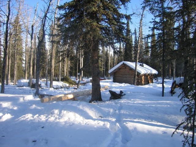 log cabin better