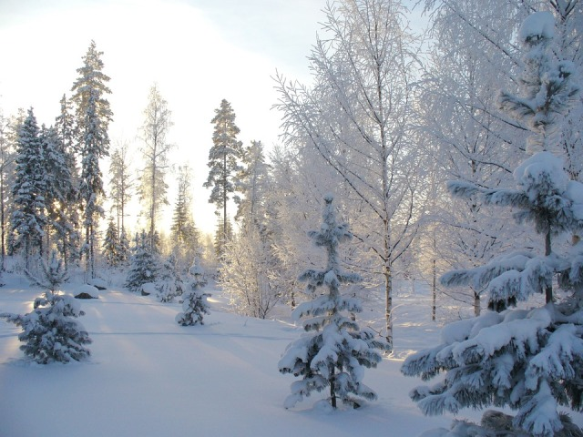 winter-2675500_960_720